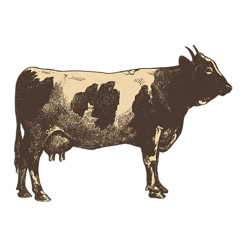 Sonoma County Beef