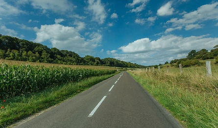Beautiful Driveway_edited.jpg
