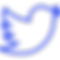 twitter (1).png