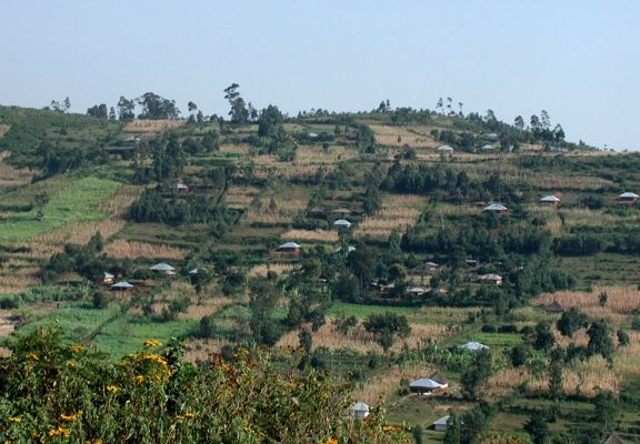 Kisii Kenya