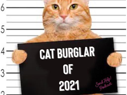 Cat Burglar of 2021