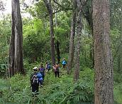 trekking in chiang rai