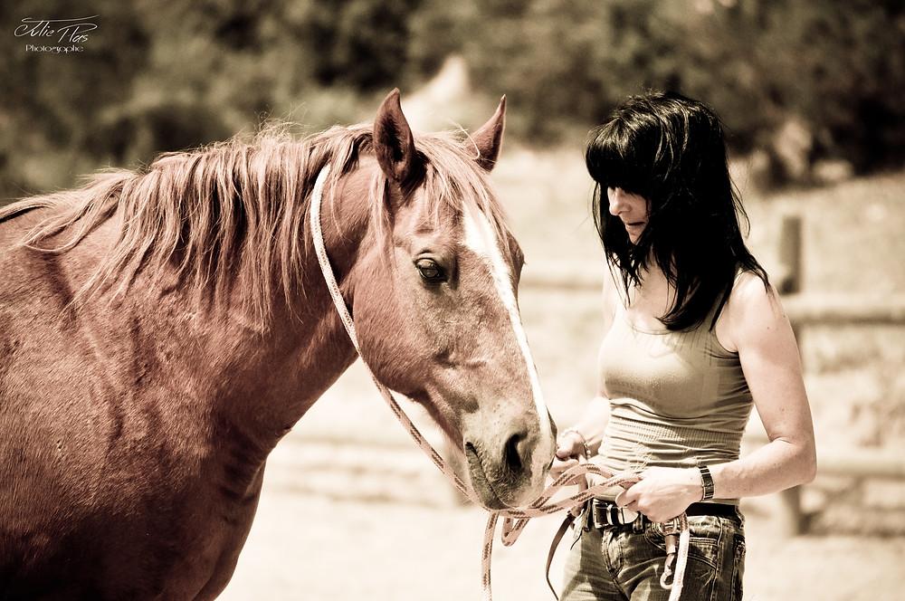 Kinésio-équine kinésiologie animale cheval fourbure soin énergétique