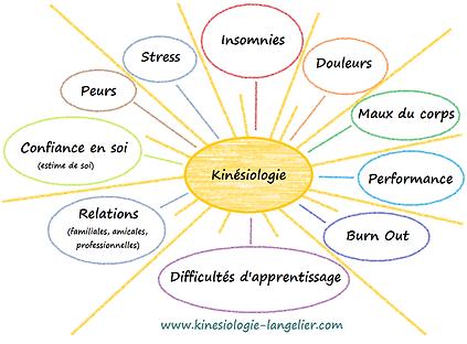La_Kinésiologie.png