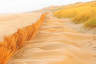 De kust - Inge Plomp