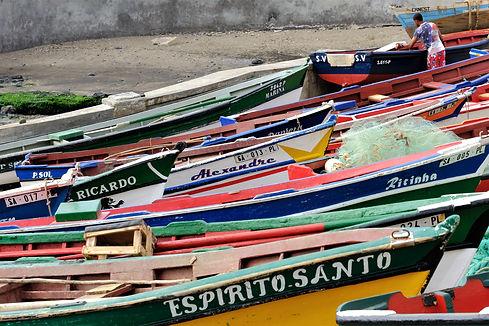 Vissersbootjes - Inge Plomp