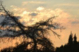 Zonsondergang - deel 3. Van Miranda Rens