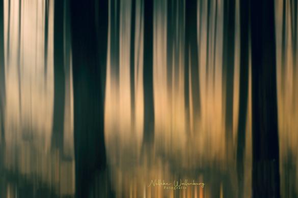 Wat is motion blur?