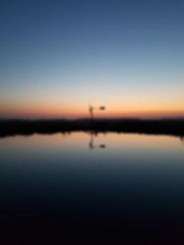 't blauwe uurtje in de polder - Peter Haitsma