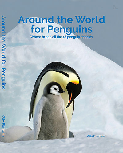 Boek - Around the world for penguins - Otto Plantema
