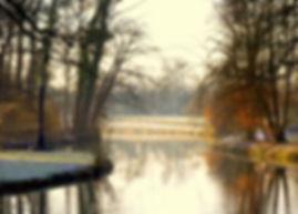 Winterlicht - Amelisweerd (25-01-2017) - Pieter Heymeijer