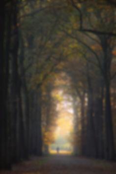Licht aan t eind - Amelisweerd (17-11-2018) - Pieter Heymeijer