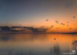 Gekleurde lucht reflecteert in het water - Nelleke Wallenburg                                                                                                                                                                                                                                                                                      De mooi gekleurde lucht reflecteert in het water                                                                                                                                                                                                                                                                                                              De mooi gekleurde lucht reflecteert in het water