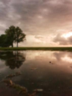 Storm - Paulines Fotodicht