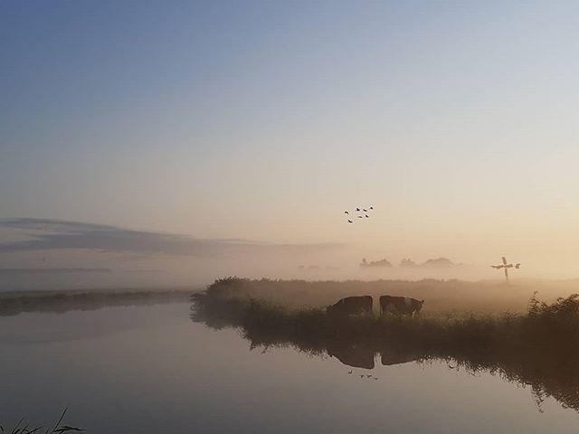 Mistige ochtend in de polder