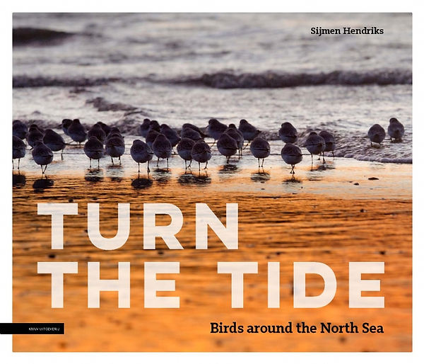Turn the tide - Sijmen Hendriks