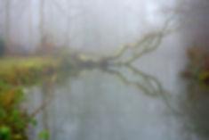 Mist of Amelisweerd - Pieter Heymeijer - 12-12-2016