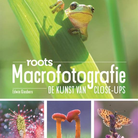 MACROFOTOGRAFIE