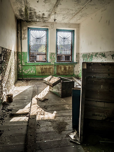 The Exclusion Zone - Wit-Rusland - Janneke van der Pol