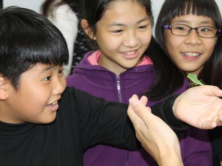 第一堂:如何辨別、認識昆蟲?