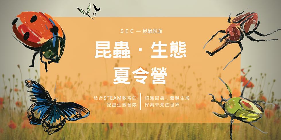 2019昆蟲生態營_霧峰