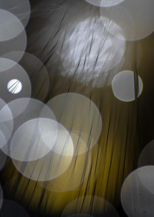 L'univers de la lumière IV