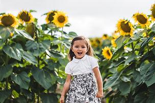 Sunflower Fields.JPG