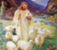 good-shepherd.jpg