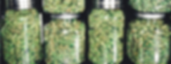 Commercial Weed.png