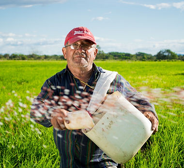 Farmer Representation