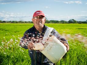 Dono de imóvel rural pode ser indenizado pela alteração do fluxo de água causada pelo vizinho