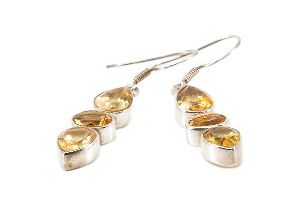 Citrine Earnings