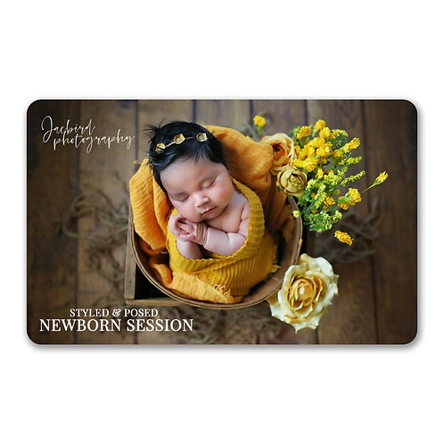 In-home Newborn Session - Styled & Posed - Gift Card
