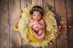 Bay Area Newborn Photographer (4).jpg