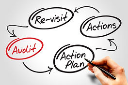 Four steps of the audit process in order