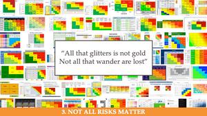 Not all risks matter