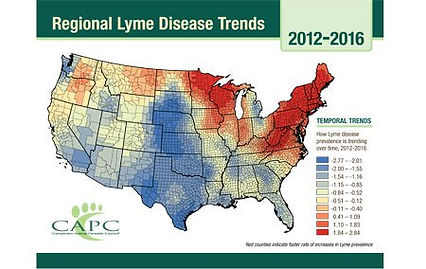 veterinary_CAPC_Regional_Lyme_Disease_Tr
