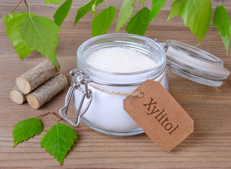 Xylitol is Dangerous to Your Dog – BEWARE!