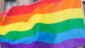 דגל הגאווה.jpg