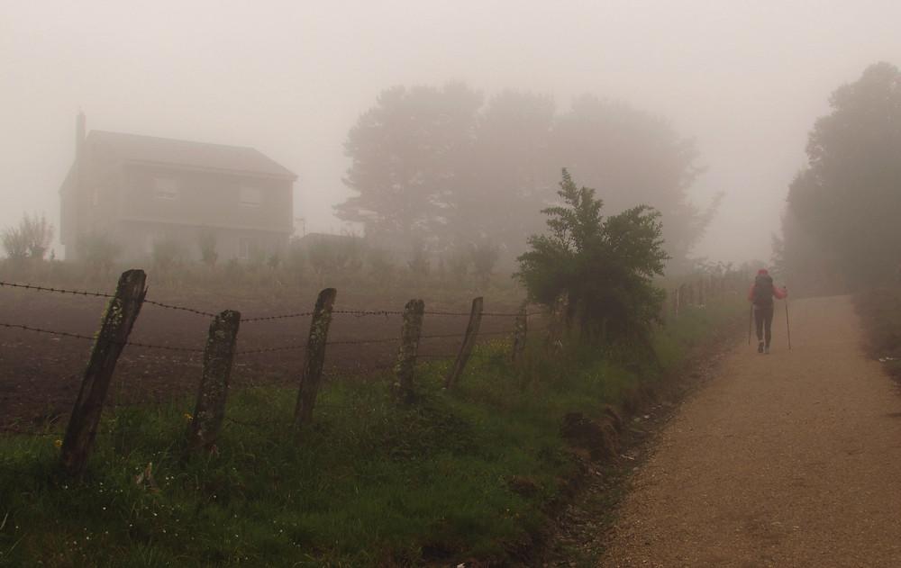 Забор в тумане