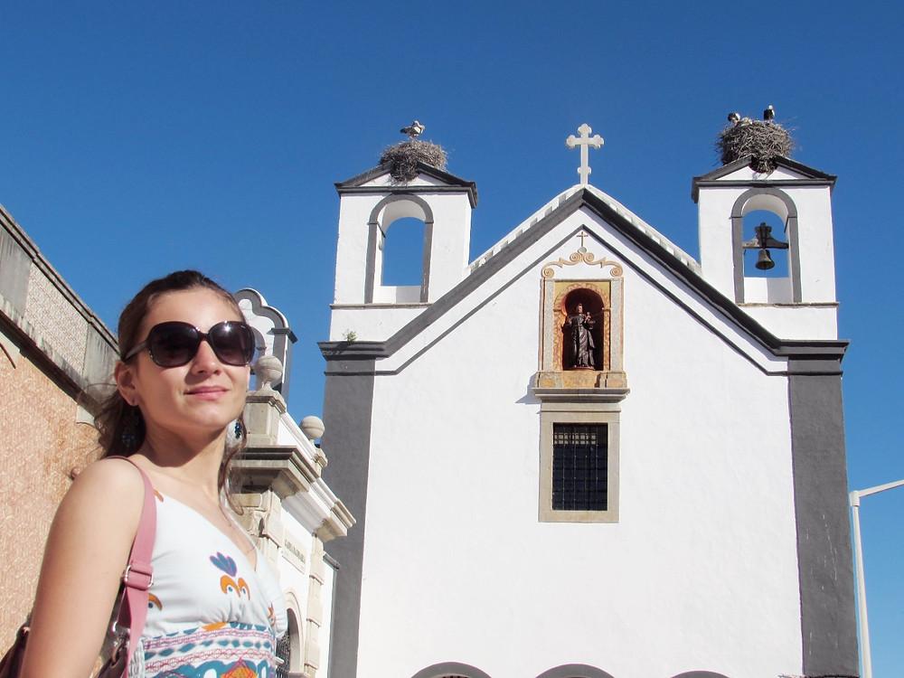 Церковь с аистами