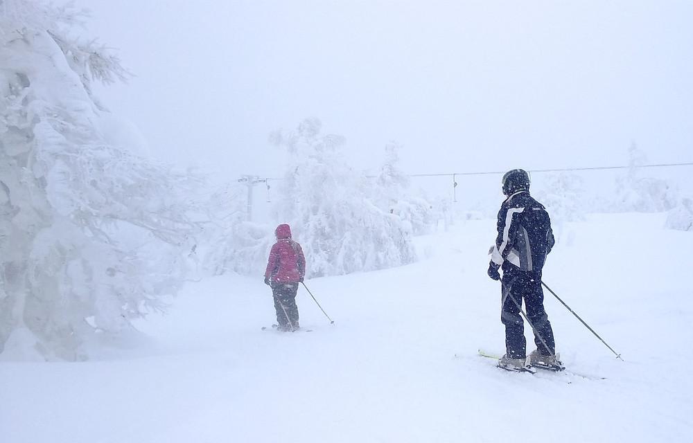Лыжники-пенсионеры