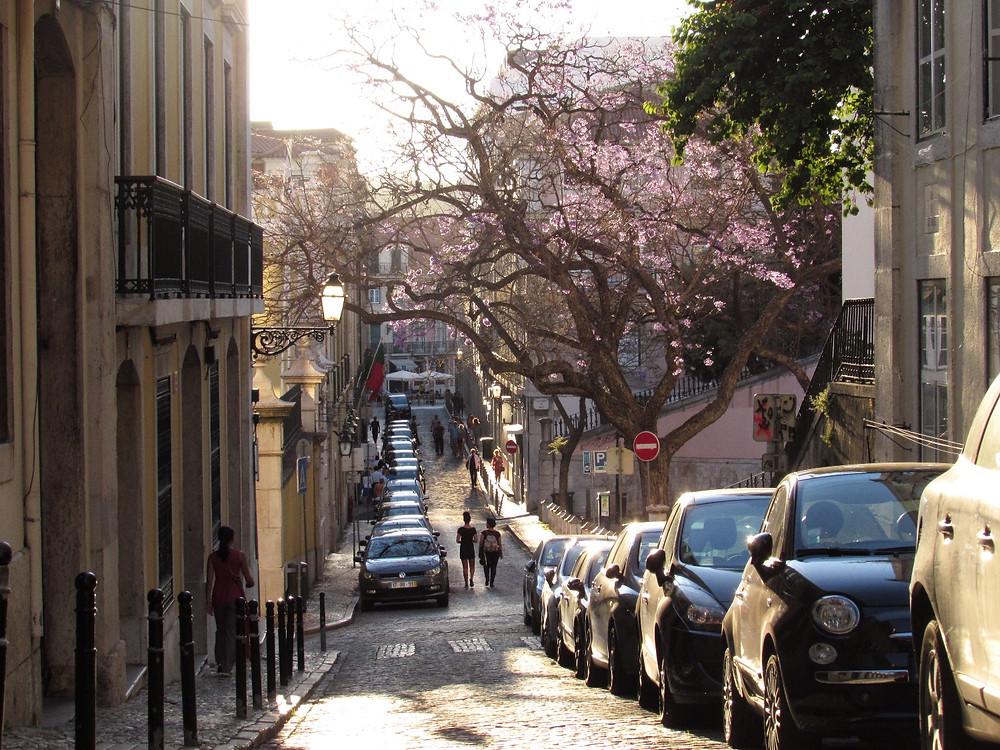 Улицы Алфамы