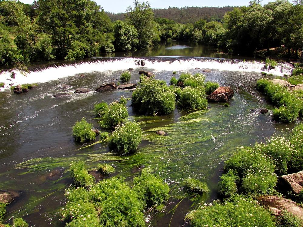 река Тамбре