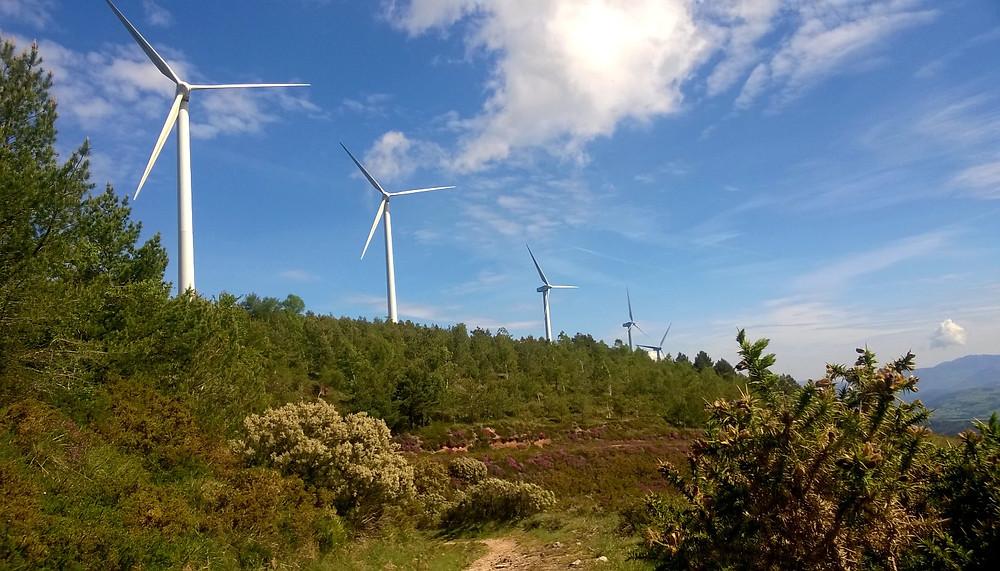 Ветряки