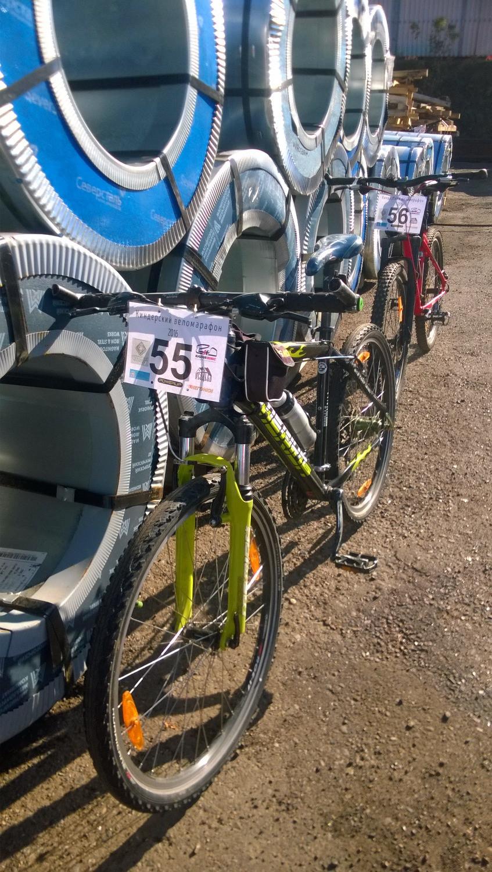 Велосипеды перед старотом