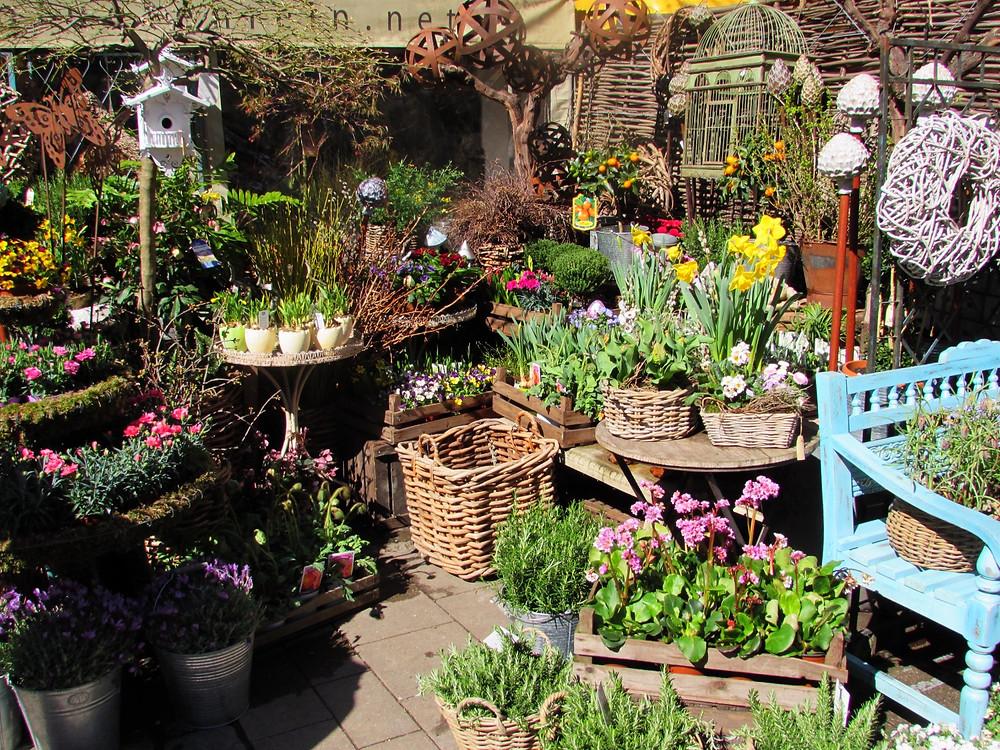 Рынок Виктуалиенмаркт - цветы