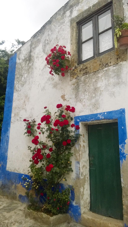 Цветы в Обидуше