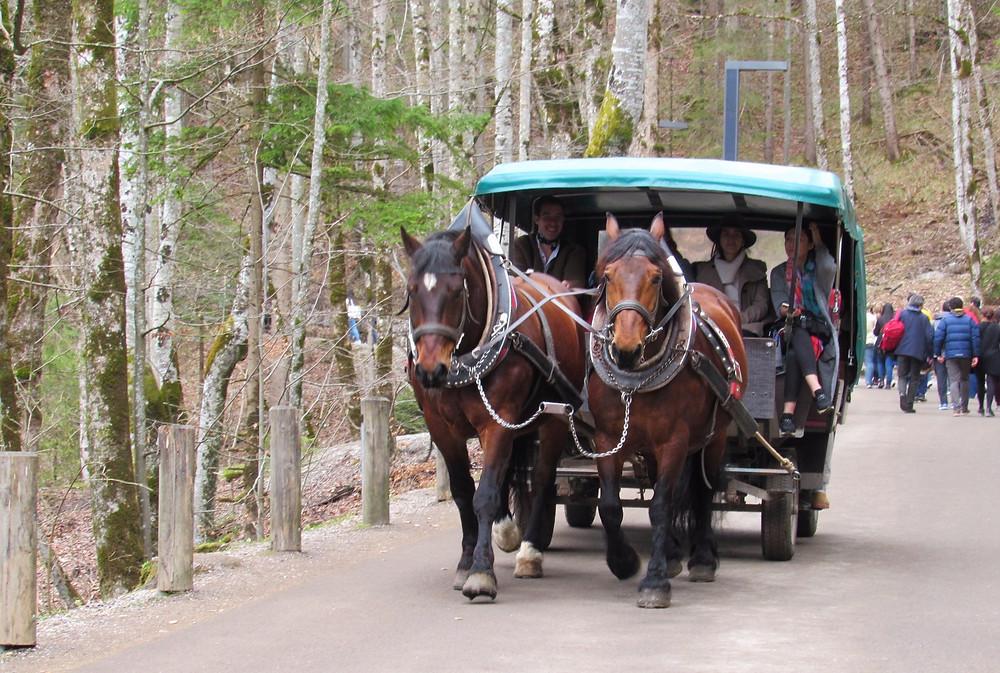 Трансфер до Нойшванштайн на лошадиных повозках