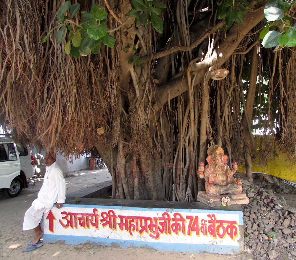 Статуя Ганеши под деревом
